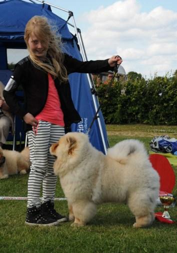 Chow Chow barn og hund konkurrence, Emma Maj Lindorff