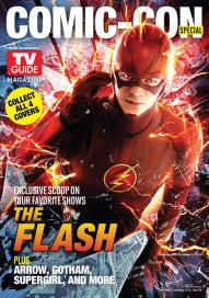 cover_flash