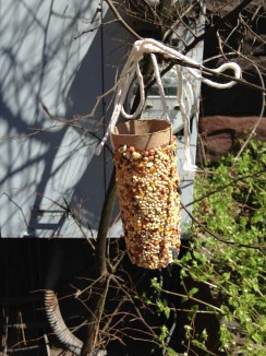 I channeled kindergarten crafts and made a bird feeder in an attempt to attract entertainment for the cats. Can't say who ate more peanut butter, me or the squirrels.