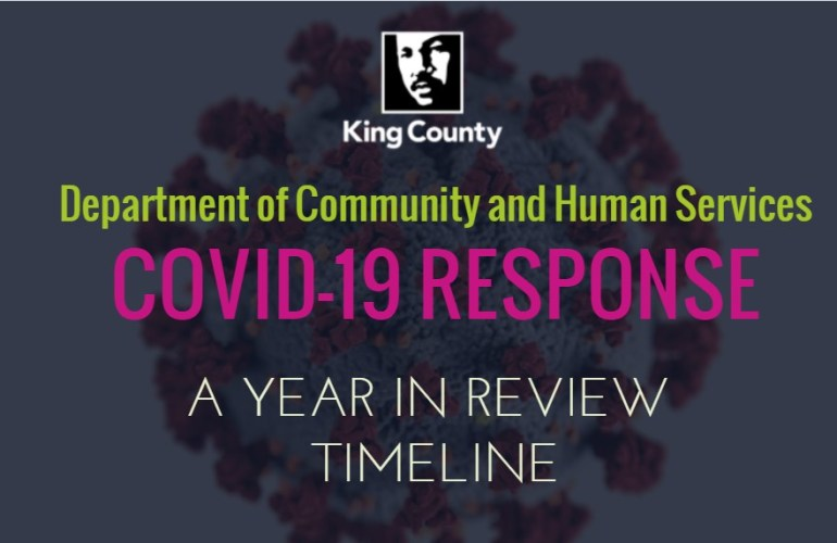 DCHS COVID Timeline Preview