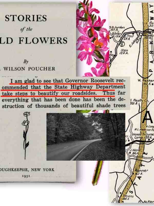 FDR pursued Roadside Beautification legislation while Poucher published his series of newspaper articles in a book.