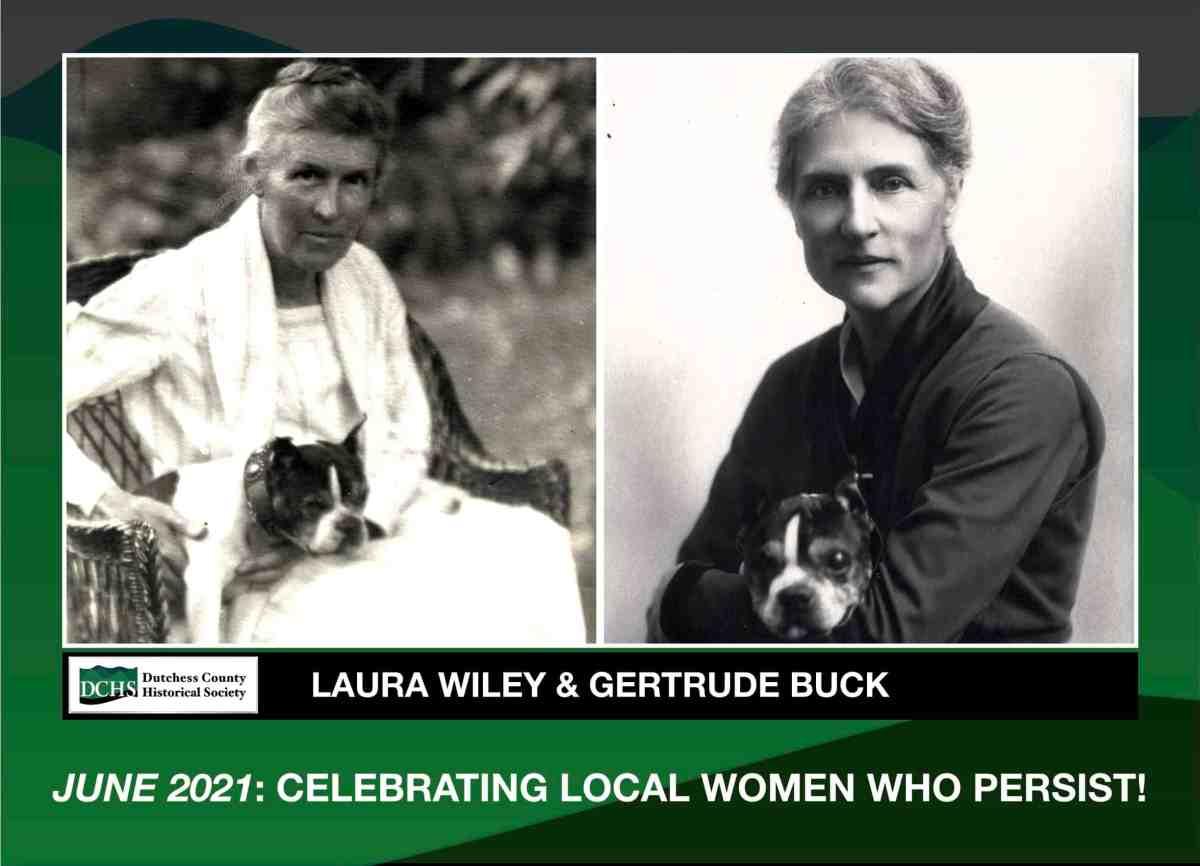 Suffrage & social betterment