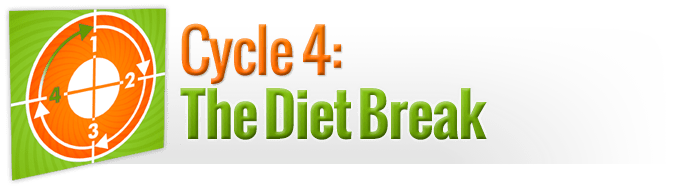 Cycle 4: The Diet Break