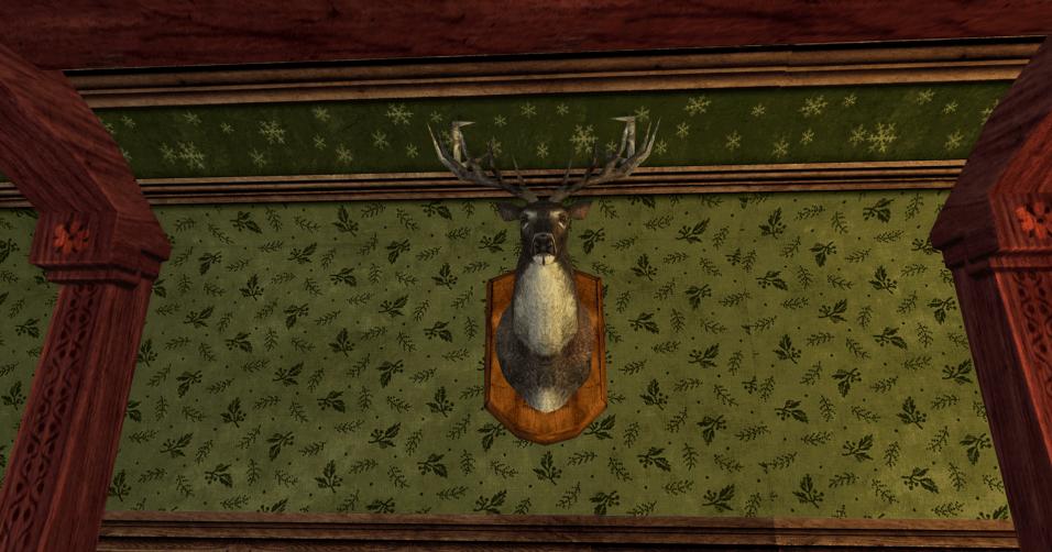 tête de cerf montée au mur des R