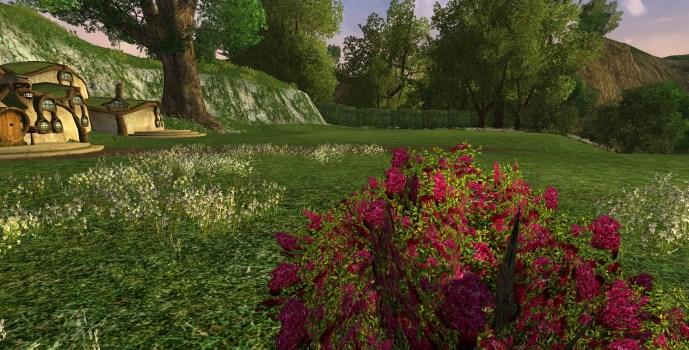 Petit Buisson de Roses Rouges d'Imloth Melui