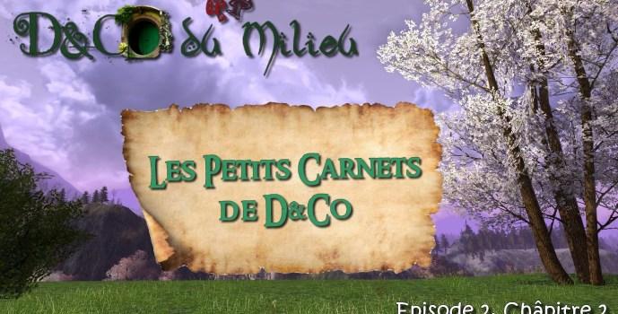Episode 2: Les Petits Carnets de D&Co #2