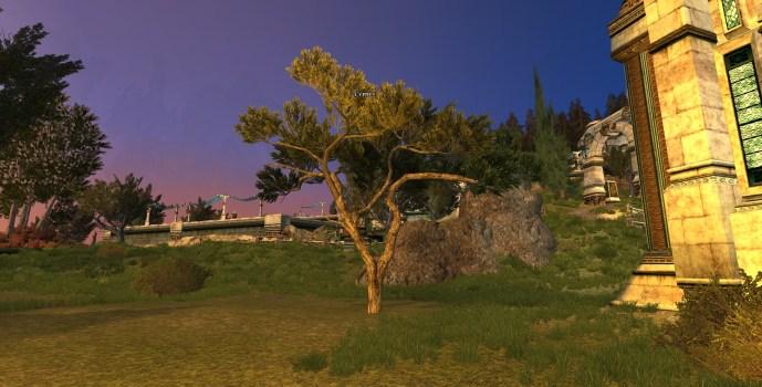 Cyprès