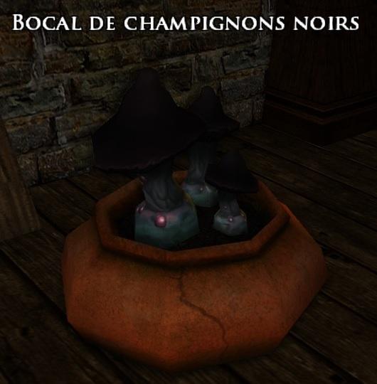 bocal-champignons-noirs