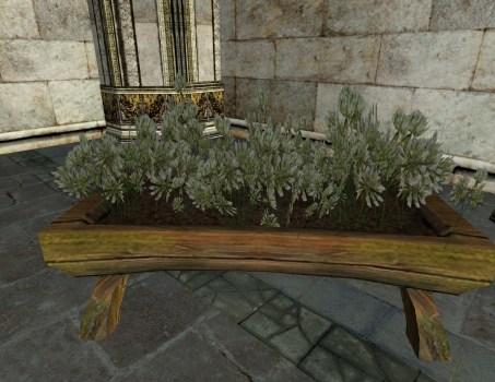 Jardinière Surélevée de Trèfle blanche