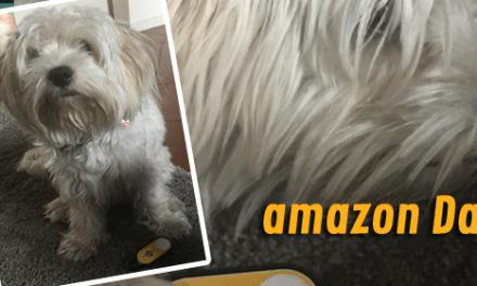 amazon Dash Button: Hilfe, Berta versteht die Hintergründe nicht!