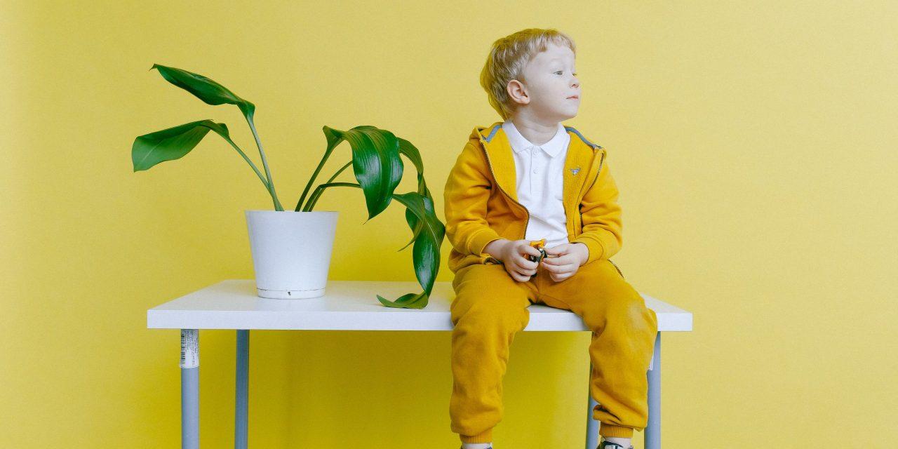 Heimarbeit: 5 Strategien, Kinder sinnvoll zu beschäftigen