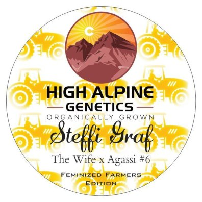 Steffi Graf (The Wife x Agassi #6) 10 Feminized High CBD Seeds