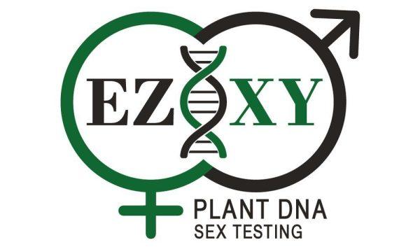 EZ-XY DNA Plant Sex Test 10 Samples