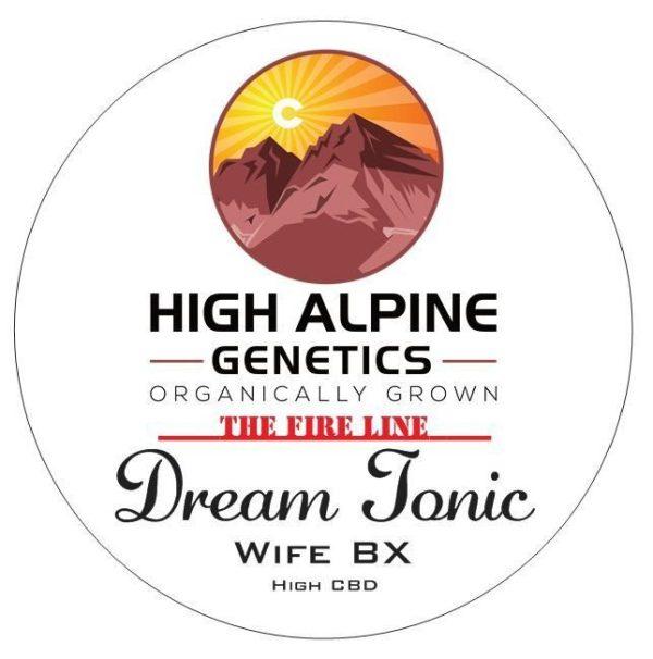 Dream Tonic (The Wife BX) 10 Regular High CBD Seeds