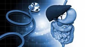 Curso de Simbióticos (probióticos y prebióticos)