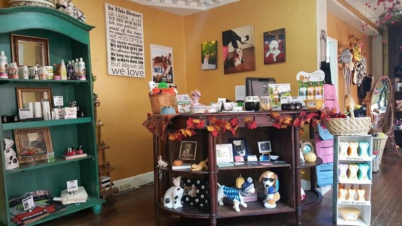 DogFriendly Dallas Pet Friendly Resaurants Hotels Parks