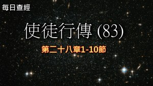 Read more about the article 使徒行傳(83)28:1-10