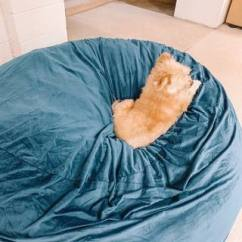 Teal Bean Bag Chair The Chronicles Of Narnia Silver Cast Ultimate Sack 6000 Chairs Foam Bags Awesome Can You Even This Dude Hates Being Away From His Mama