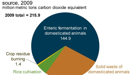 Methane Emissions from Agriculture 2009 EIA