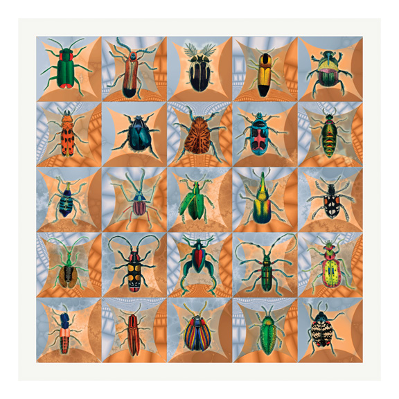An inordinate fondness for beetles (1/6)