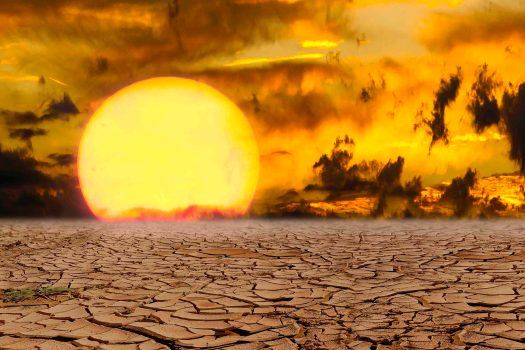 sun, suffer