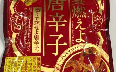 セブンイレブン限定?真・燃えよ唐辛子(アサヒグループ食品)が発売されていたのでゲット&実食しました!