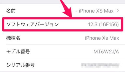 iOS12.3リリース。メジャーアップデートなので更新は少し待ったほうが良いかも。アップデートすべき?待つべき?不具合は?サイズ・更新時間・修正内容は?