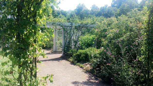 postcard-brooklyn-botanic-garden-new-york-desmitten