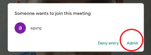 Google Meet-admit