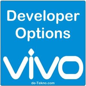Mengaktifkan developer options