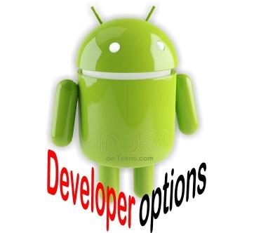 Fungsi Setting Developer options