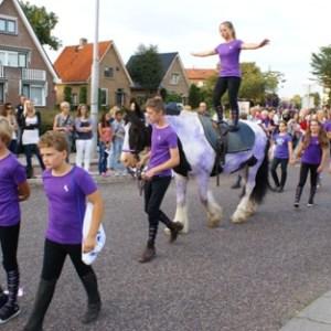 Heideweek optocht 2011