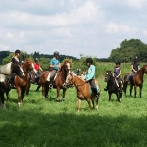 Ponykamp 2012 (6-8 t/m 10-8)