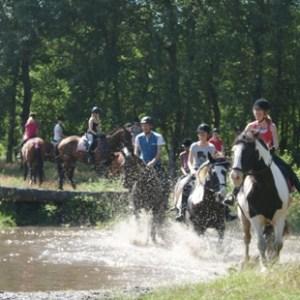Ponykampen 2013