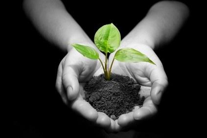Konferenz über biologische Vielfalt und die Bio-Saatgut