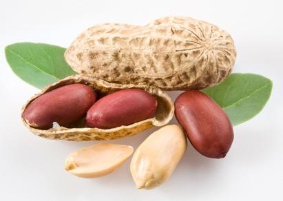 Rezepte mit Erdnüssen