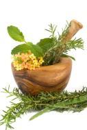Phytotherapie und Lebensmittel Allergie