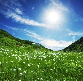 MAPA Treffen und ökologische Verbände