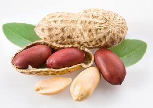 Süße und salzige Erdnuss Rezepte