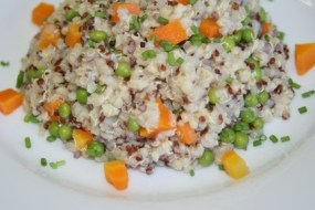 Rezepte für kalorienarme kleine Mahlzeiten