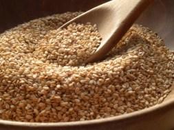 Gomasio: Salziges Gewürz