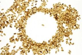 Brauner Reis, ein wunderbares Getreide