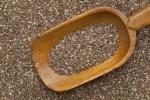 Kennen Sie den Chia Samen, super für die Ernährung