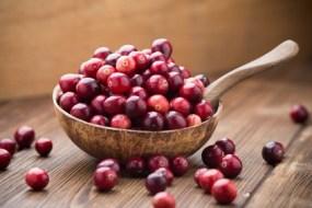 Preiselbeeren, rote Früchte für Ihre Gesundheit