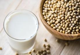 Rezepte mit Soja-Milch und Soja-Mehl