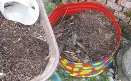 ...und zum Schluss 10-12 cm reifen Mulch Fertig !