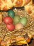 mit Naturfarben für Ostereier gefaerbte Eier im essbaren Osterkorb