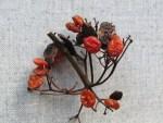 glasige, alte und frische Schneeball Beeren am Zweig
