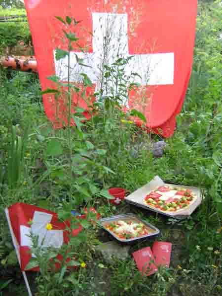 Schweizerfahne im Garten