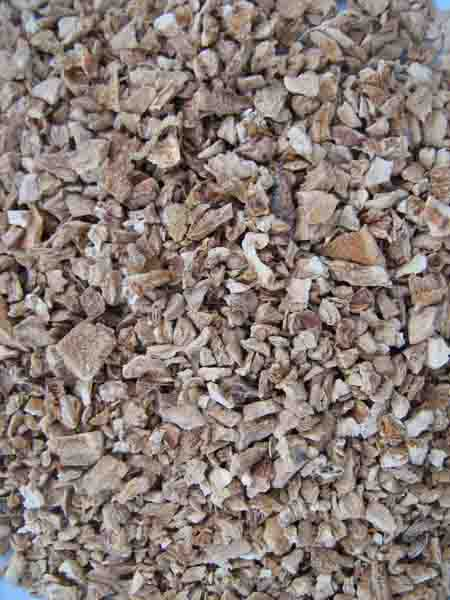 Semmelstoppel-Pilze granuliert